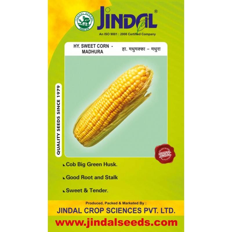 Jindal Sweet Corn Hybrid Seeds(Goda Maka Seeds) Madhura -50GM