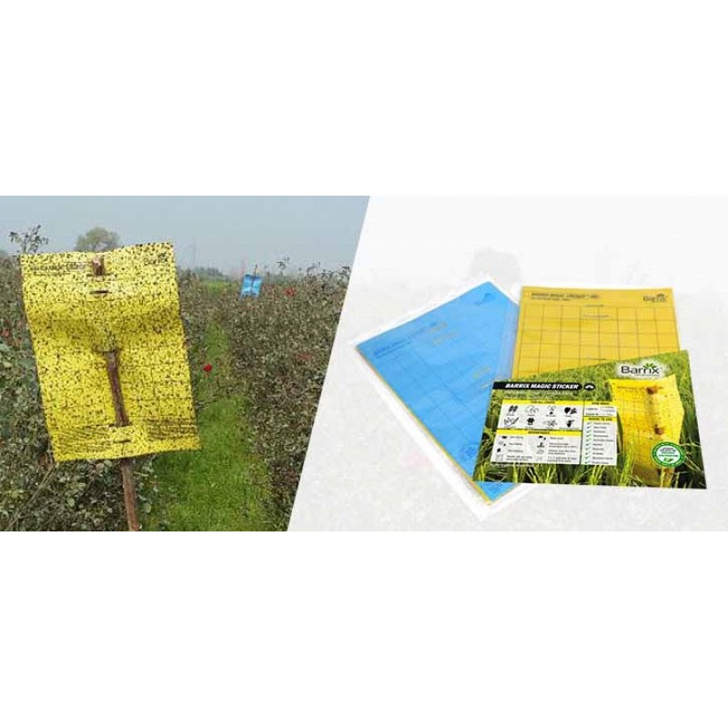 Barrix Magic Sticker Chromatic Trap – Combo Pack (5 Sheets)