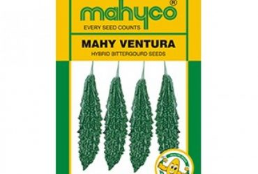 mahyco BITTERGOURD VENTURA (50g)