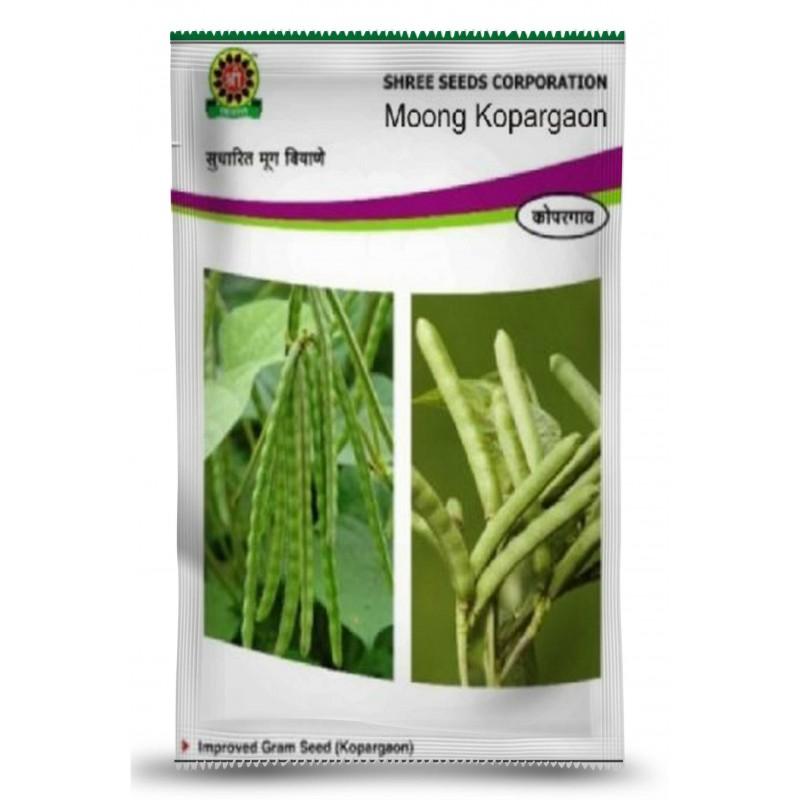 Shree Moong – Green Gram Seeds